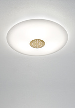FLUSHMOUNT LED