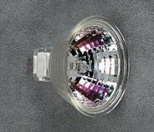 Halogen Bulbs in