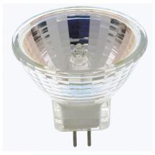 Flood Bulbs in Manteca
