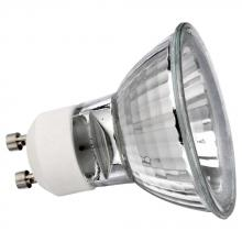 TRANSITIONS LAMPS