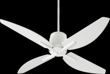 Ceiling Fans in Ringoes