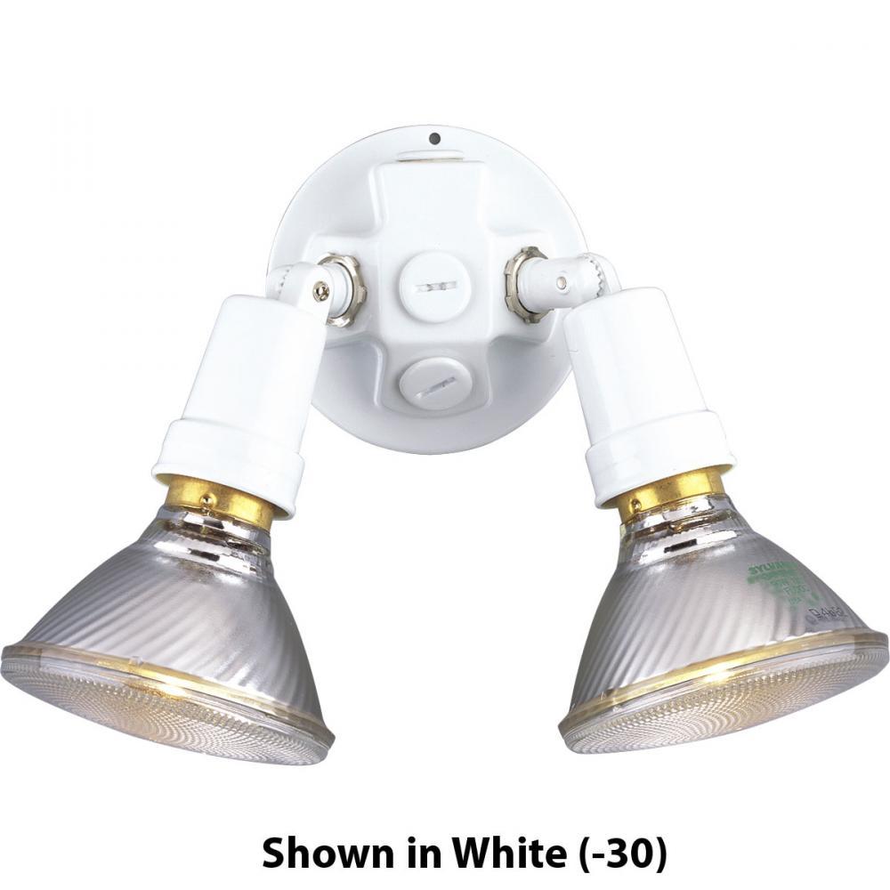 PRO P5207-31 2-150W ADJ WALL