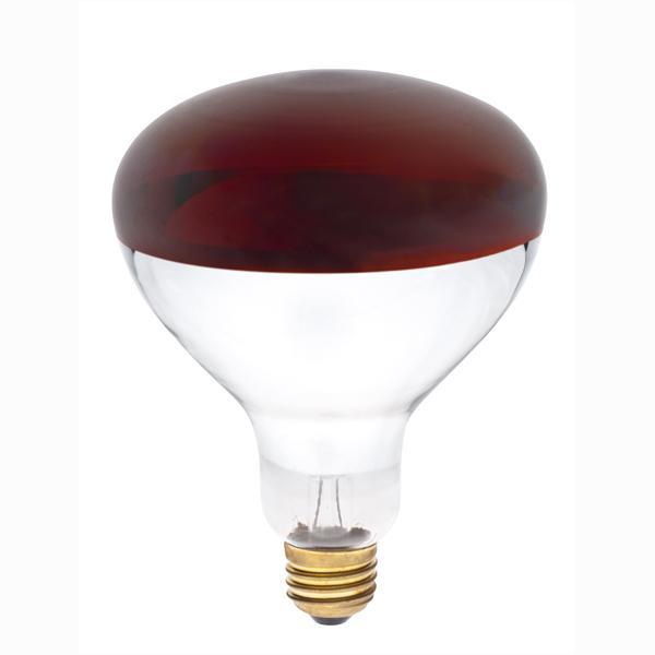 ABC 0348300 R40 250W RED HEAT LAMP LAMP CS=10
